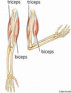 Artróza kolene domácí léčba