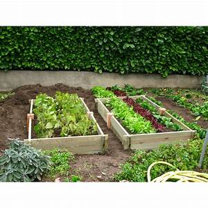 Mini Potager En Bois : le potager de jardin rectangulaire en bois non trait ~ Premium-room.com Idées de Décoration