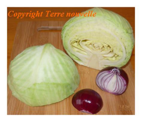comment cuisiner un choux vert cuisiner un chou vert 28 images galettes de pommes de