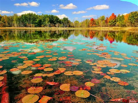 Beautiful Pictures Of Nature Wallpaper by 50 Beautiful Pictures And Wallpapers To The Wow