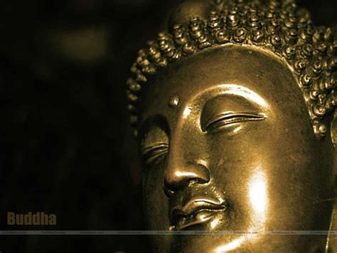 buddha wallpapers iphone hd buddhist buddhism god backgrounds wallpapersafari