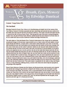 Descriptive Essay Thesis Breath Eyes Memory Essay Themes Argumentative Essay High School also Write My Essay Paper Breath Eyes Memory Essay Sample Essay About Education Breath Eyes  How To Write An Essay For High School Students