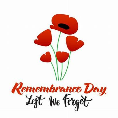 Remembrance Poppy Vector Clip Poster Illustrations Graphics