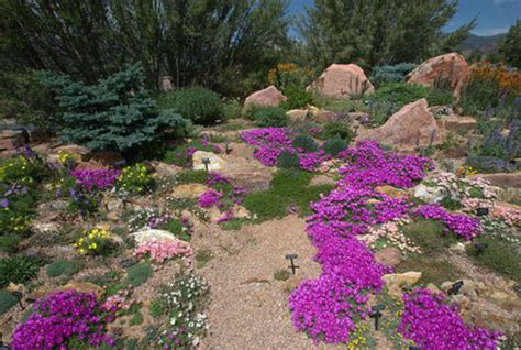 xeriscape trees xeriscape plants pictures to pin on pinterest pinsdaddy