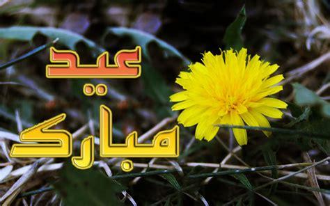 yellow flower eid ul adha  flower card wallpapers urdu