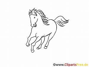 Bilder Schwarz Weiß Gemalt : pferde zeichnungen schwarz weiss ~ Eleganceandgraceweddings.com Haus und Dekorationen