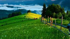 Green Hills Wallpaper