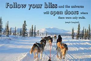 11 best Quotes,... Dog Sledding Quotes