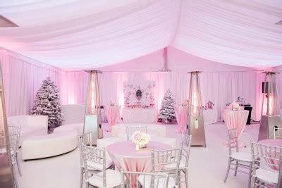 view    pink winter wonderland baby shower
