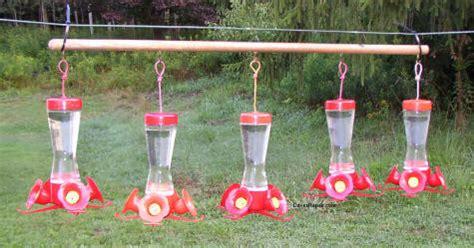 how to keep ants hummingbird feeder how to keep ants out of your hummingbird feeders