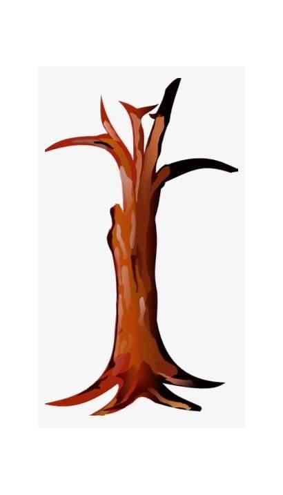 Tree Trunk Clipart Stump Clip Bark Drawing