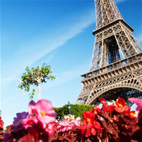 france paris eiffel tower flowers facebook cover places