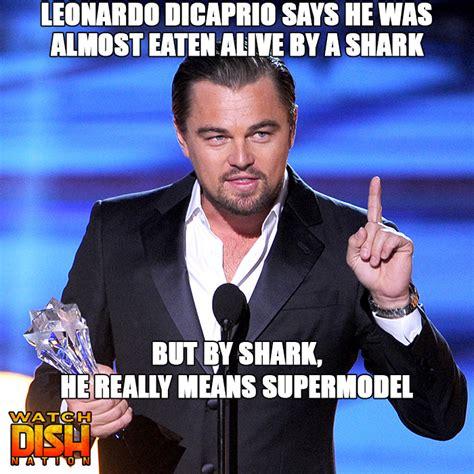 Leonardo Memes - leonardo dicaprio has 9 lives dish nation entertaining entertainment news entertainment