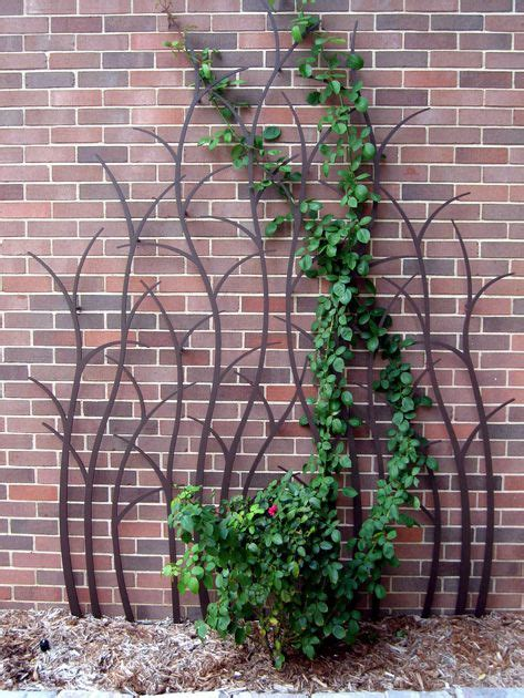 branching trellis for climbing on stakes in the