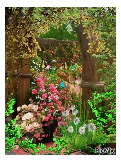 Garden Rose Picmix