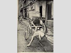 India and Pakistan Rare Pictures ~ Splendid Pictures