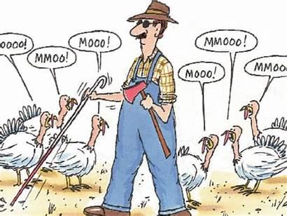 Thanksgiving Funny Happy Turkey Cartoon Sayings Christian