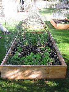 garden, and, raised, beds
