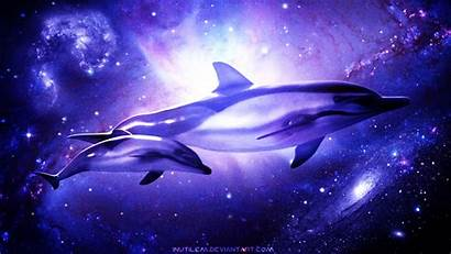 Dolphin Cosmic Wallpapers Fondos Pantalla Galaxia Animales