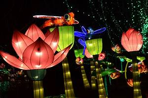 Illuminated lanterns on display at Chinese Lantern Fest ...
