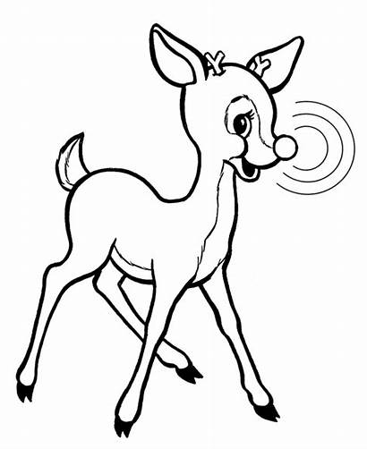 Coloring Pages Rudolf Rudolph Reindeer Popular