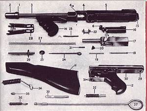 Reproduction Thompson Accessories Reference Guide