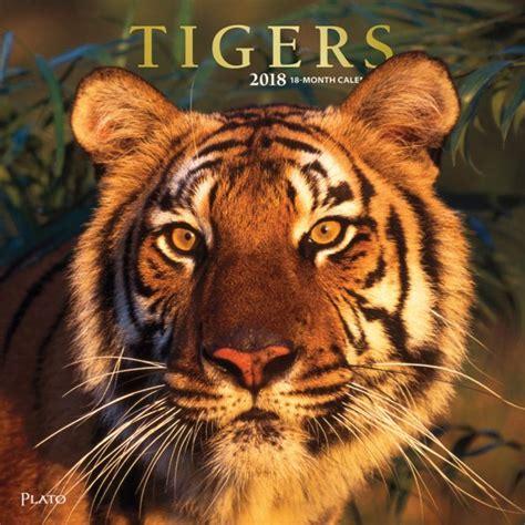 tigers wall calendar plato calendars