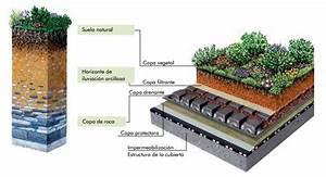 Manuales O Gu U00edas Sobre Cubiertas Vegetales  Ventajas Y