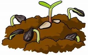 Image download: Seeds and Soil   Christart.com
