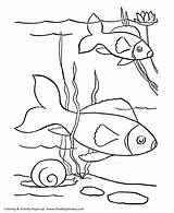 Coloring Fish Pages Pet Printable Printables Sheets Pond Print Cutouts Animal Pets Ocean Animals Pre Activity Duckling Ugly Honkingdonkey Popular sketch template
