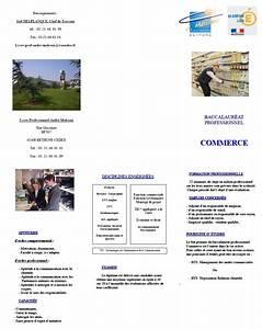 BAC PRO COMMERCE Lycée Professionnel André Malraux