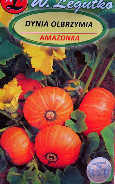 Ķirbji AMAZONKA 3 g W.Legutko - Ķirbji - Sēklu ...