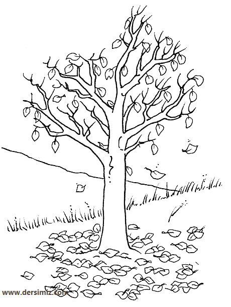 En Iyi Koleksiyon Okul öncesi Ağaç Gövdesi Boyama Yazdırılabilir