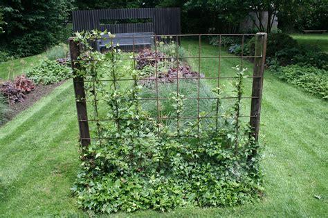 Zaun Aus Baustahlmatten by Gartenreise Belgien Baustahl Als Rankgitter