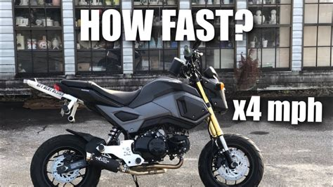 Honda Grom Actual Top Speed (watch Before You Buy)