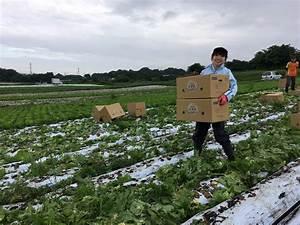 学生が広める農業 - 学生団体FaVo