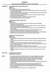 Principal Sales Consultant Resume Samples