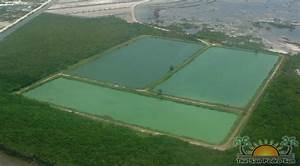 Types Of Wastewater Treatment Ponds
