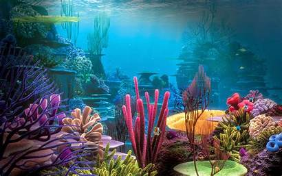 Underwater Wallpapers Source Mac
