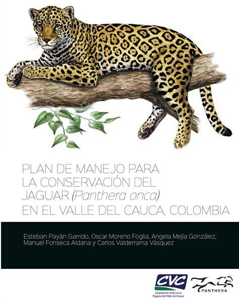 plan de manejo  la conservacion del jaguar panthera