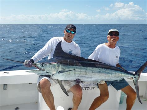 Charter Boat Fishing Miami by Outcast Miami Sea Fishing Charters 305 345 9283