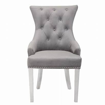 Dining Grey Chair Velvet Plush Chairs