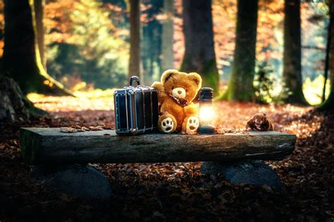 Teddy Bear Wallpapers HD 1080p – HD Wallpapers Images