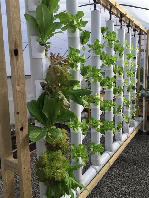 Vertical Hydroponic Garden by Gropockets Vertical Garden Aquaponics Hydroponics Soil