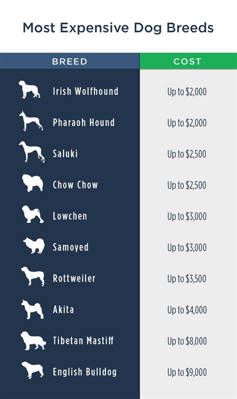 pet ownership costs guide    simple dollar