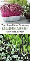 Year-Round Salad Gardening: How to Build an Indoor Garden indoor gardening vegetables year round