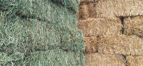 hay  straw wardle feed pet supply
