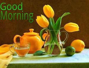Good Morning Wallpaper HD images - Wallpapers morning