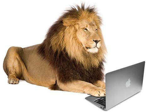 lion  laptop species