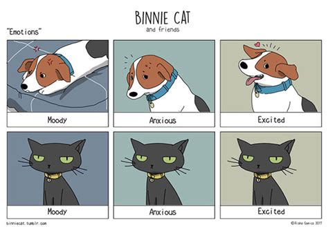 funny comics  show  differences  dogs